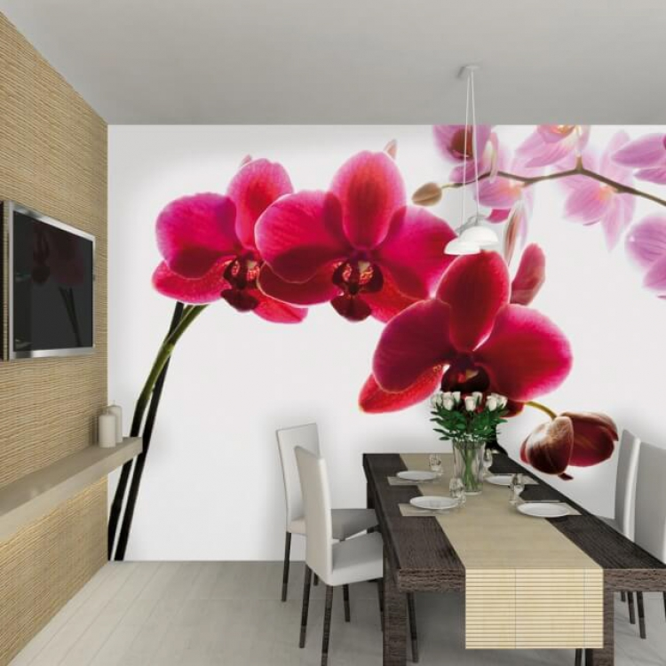 Room-Setting-ORCHID