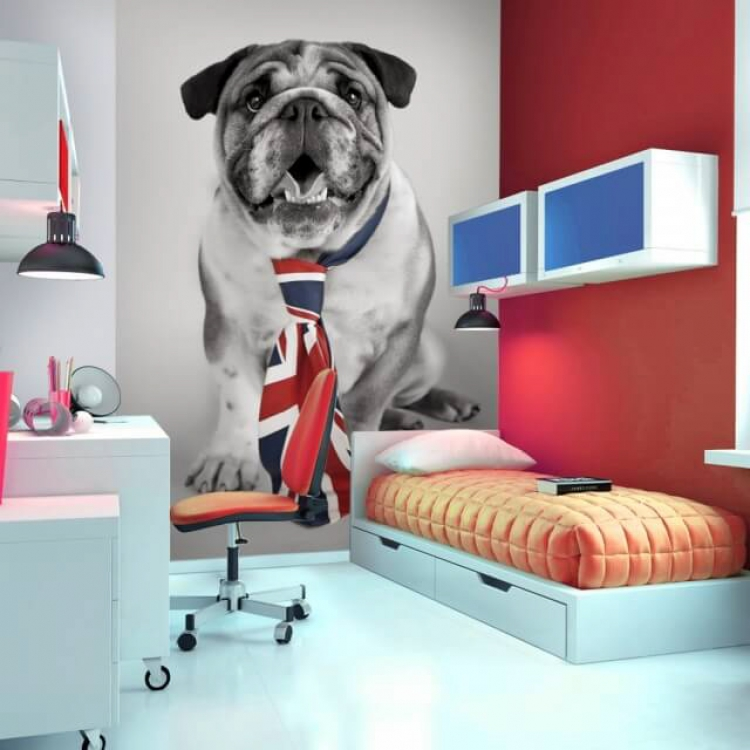 Room-Setting-DOG